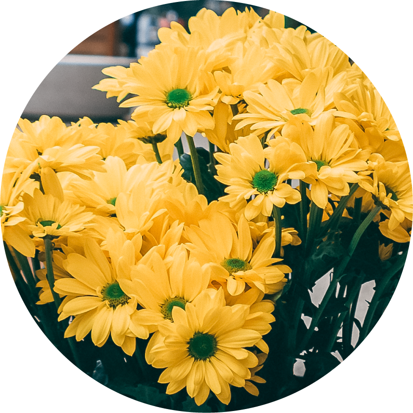Yellow Flower Bouquets for Chicago Delivery