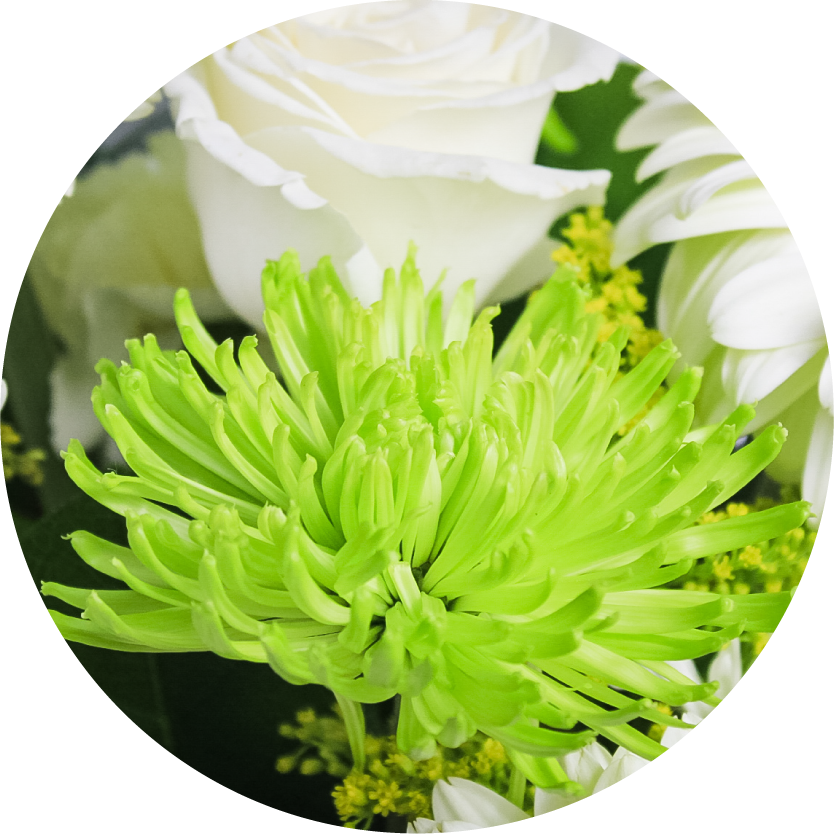 Green Flower Bouquets for Chicago Delivery