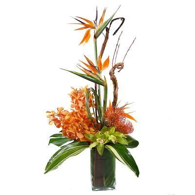 Tropical Vased Arrangement