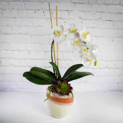 Eternal Blooms - Faux Orchid Planter
