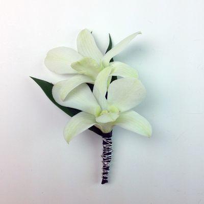 Dendrobium Boutonniere