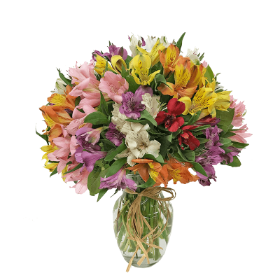 Bouquet of the Month - Alstroemeria