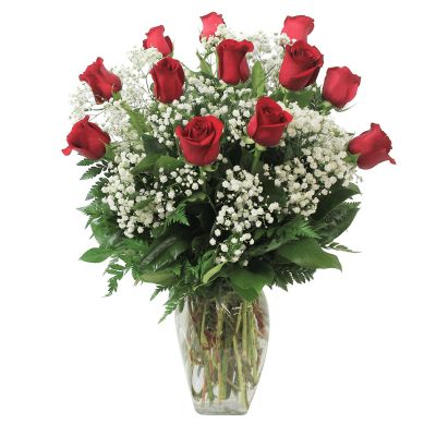 Classic Dozen Roses with Baby's Breath