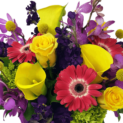 Designer's Choice Fresh Cut Flower Arrangement