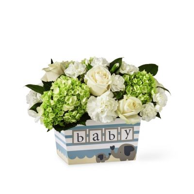 FTD Darling Baby Boy Bouquet
