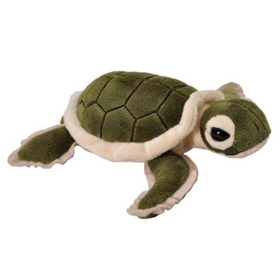 Squirt Turtle Plush