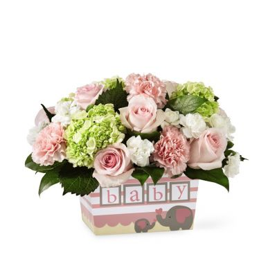 FTD Darling Baby Girl Bouquet